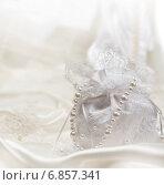Сумочка невесты. Стоковое фото, фотограф Mariya L / Фотобанк Лори