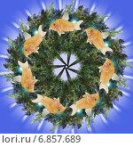 Купить «Декоративная мандала с рыбками», иллюстрация № 6857689 (c) Astronira / Фотобанк Лори