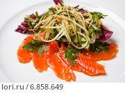 Купить «Салат с семгой, огурцом, зеленью и кунжутом», фото № 6858649, снято 23 мая 2012 г. (c) Gagara / Фотобанк Лори