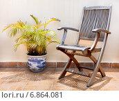 Деревянный стул и пальма в горшке. Стоковое фото, фотограф Максим Блинков / Фотобанк Лори