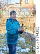 Купить «Довольная женщина обрезает куст смородины на даче ранней весной», фото № 6874825, снято 10 марта 2014 г. (c) Марина Славина / Фотобанк Лори