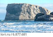 Зимнее побережье Тихого океана на Камчатке. Стоковое фото, фотограф Федоренко Борис / Фотобанк Лори