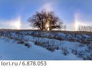 Природное явление гало ранним морозным утром. Стоковое фото, фотограф Валерий Боярский / Фотобанк Лори