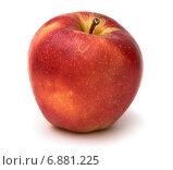 """Купить «Красное яблоко сорта """"Клубничка""""», фото № 6881225, снято 9 декабря 2014 г. (c) Родион Власов / Фотобанк Лори"""
