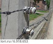 Освенцим Аушвиц 1. Высоковольтные держатели колючей проволоки (2014 год). Редакционное фото, фотограф Евгения Бугас / Фотобанк Лори