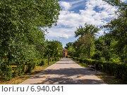 Купить «Аллея в сквере «Берёзка» в городе Азове», фото № 6940041, снято 13 июня 2014 г. (c) Борис Панасюк / Фотобанк Лори