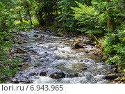 Купить «Горная река в лесу», фото № 6943965, снято 6 июля 2013 г. (c) Евгений Ткачёв / Фотобанк Лори