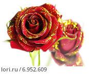 Купить «Розы», фото № 6952609, снято 29 октября 2009 г. (c) Anatoly Maslennikov / Фотобанк Лори