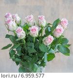 Розовые розы. Стоковое фото, фотограф Ириша Карбышева / Фотобанк Лори