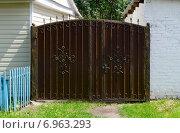 Купить «Кованые металлические ворота у деревенского дома», фото № 6963293, снято 23 июля 2014 г. (c) Ольга Коцюба / Фотобанк Лори