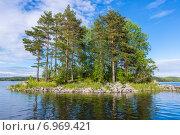 Купить «Маленький остров с соснами на Ладожском озере», фото № 6969421, снято 18 июня 2014 г. (c) Михаил Аккуратов / Фотобанк Лори