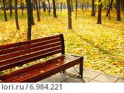 Купить «Скамейка в осеннем парке.Сквер Девичье поле.Москва», фото № 6984221, снято 11 октября 2014 г. (c) ирина реброва / Фотобанк Лори