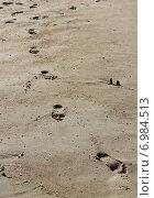 Следы на песке. Стоковое фото, фотограф Крупенникова Татьяна / Фотобанк Лори