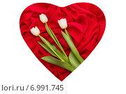 Три белых тюльпана в красном сердце. Стоковое фото, фотограф Екатерина Ярославовна Мостовая / Фотобанк Лори