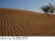 В пустыне. Стоковое фото, фотограф Шайкина Наталья / Фотобанк Лори