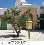 Почтовый ящик у дерева во дворе, Тунис (2013 год). Стоковое фото, фотограф Наталья Большакова / Фотобанк Лори