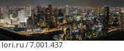 Панорамный ночной вид на небоскребы города Осака (2013 год). Редакционное фото, фотограф Алексей Копытько / Фотобанк Лори