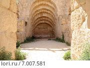 Купить «Римские руины в Иорданском городе (Jerash) Джераш, Иордания», фото № 7007581, снято 5 апреля 2014 г. (c) Владимир Журавлев / Фотобанк Лори