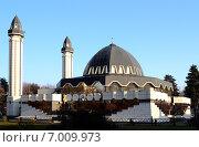 Купить «Соборная мечеть Нальчика», фото № 7009973, снято 27 января 2015 г. (c) KSphoto / Фотобанк Лори
