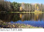 Озеро Бабошка, Балашиха (2013 год). Стоковое фото, фотограф Шайкина Наталья / Фотобанк Лори