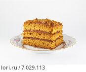 Кусок медового торта на блюдце. Стоковое фото, фотограф Дарья Андрианова / Фотобанк Лори