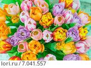 Букет тюльпанов. Стоковое фото, фотограф Александр Сулейманов / Фотобанк Лори