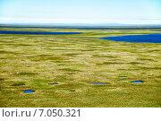 Купить «Tundra landscape in the north of Yakutia», фото № 7050321, снято 12 июля 2013 г. (c) Serg Zastavkin / Фотобанк Лори