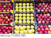 Купить «various apples», фото № 7053741, снято 23 января 2019 г. (c) Яков Филимонов / Фотобанк Лори