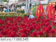 Купить «Продавец цветов и флагов. Вьетнам», фото № 7060545, снято 17 февраля 2015 г. (c) Александр Подшивалов / Фотобанк Лори