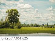 Купить «Красивый летний вид. Полесье, Украина», фото № 7061625, снято 21 ноября 2018 г. (c) Елена Корнеева / Фотобанк Лори