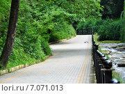 Кисловодский парк (2013 год). Редакционное фото, фотограф Синенко Юрий / Фотобанк Лори