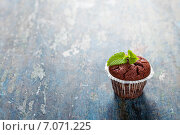 Купить «Шоколадный кекс с листьями мяты», фото № 7071225, снято 15 мая 2014 г. (c) Наталия Кленова / Фотобанк Лори