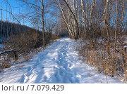 Купить «Снежня тропинка», фото № 7079429, снято 6 января 2015 г. (c) Валерий Боярский / Фотобанк Лори