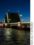 Купить «Кунсткамера. Разведенный дворцовый мост. Санкт-Петербург», эксклюзивное фото № 7079653, снято 5 июня 2011 г. (c) Александр Щепин / Фотобанк Лори
