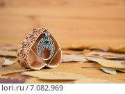 Серебряный кулон с зеленым камнем. Стоковое фото, фотограф Мария Алябьева / Фотобанк Лори