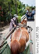 Вьетнам (2014 год). Редакционное фото, фотограф Турчук Анна / Фотобанк Лори