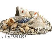 Купить «Галька, ракушки и статуэтка рыбы», фото № 7089957, снято 6 марта 2015 г. (c) Алексей Маринченко / Фотобанк Лори