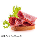 Купить «sandwich with salami sausage on white background cutout», фото № 7090221, снято 9 апреля 2014 г. (c) Natalja Stotika / Фотобанк Лори