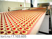 Купить «Производство печенья на фабрике», фото № 7103605, снято 3 октября 2007 г. (c) Iordache Magdalena / Фотобанк Лори