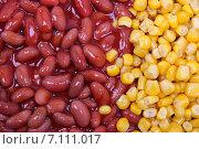 Купить «Зёрна кукурузы и фасоль в соусе», фото № 7111017, снято 5 июля 2011 г. (c) Оксана Морозова / Фотобанк Лори