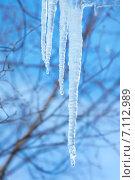 Купить «Сосульки на фоне голубого неба. Приход весны.», фото № 7112989, снято 12 марта 2015 г. (c) Икан Леонид / Фотобанк Лори