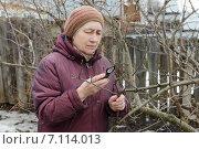Купить «Женщина осматривает ветви яблони в поисках вредителей», фото № 7114013, снято 9 марта 2015 г. (c) Марина Славина / Фотобанк Лори