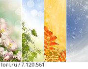 Четыре сезона - весна, лето, осень, зима. Стоковое фото, фотограф Ирина Толокновская / Фотобанк Лори