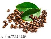 Кофейные зёрна и листья. Стоковое фото, фотограф Олег Жуков / Фотобанк Лори