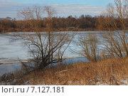 Купить «Весна на Оке», фото № 7127181, снято 9 марта 2015 г. (c) Андрей Ярцев / Фотобанк Лори