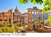 Купить «Roman ruins in Rome, Forum», фото № 7131085, снято 8 марта 2012 г. (c) Sergey Borisov / Фотобанк Лори