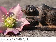 Купить «Умиротворенный Будда», эксклюзивное фото № 7149121, снято 19 марта 2015 г. (c) Ната Антонова / Фотобанк Лори