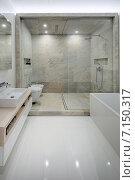 Купить «Интерьер ванной комнаты», фото № 7150317, снято 18 ноября 2013 г. (c) Andriy Bezuglov / Фотобанк Лори