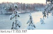 Купить «Занесенные снегом деревья на обрыве реки. Течение воды в зимнее время года, Карелия», видеоролик № 7153197, снято 2 февраля 2015 г. (c) Кекяляйнен Андрей / Фотобанк Лори