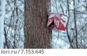 Купить «Кормушка для птиц в зимнем лесу», видеоролик № 7153645, снято 31 января 2015 г. (c) Кекяляйнен Андрей / Фотобанк Лори